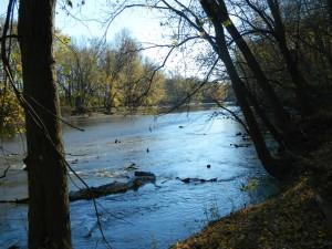 Scioto Grove Scioto River