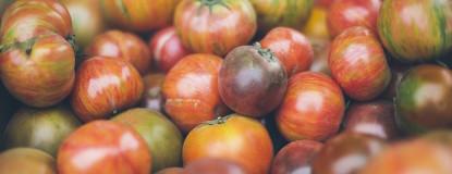 Wednesday Garden Market Event Featured Photo
