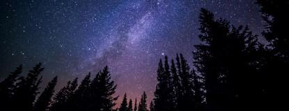 Night Hike Event Photo