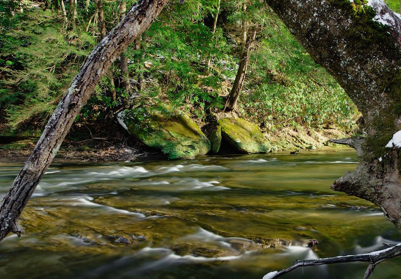 Clear Creek featured photo